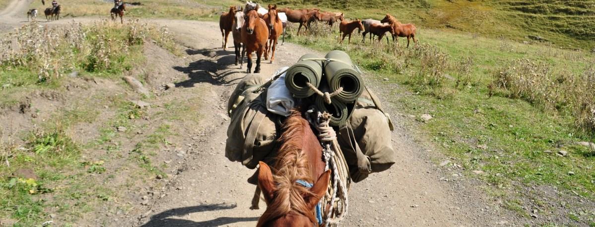 Rajd konny w Gruzji - co zabrać ze sobą na wyprawę ? ...
