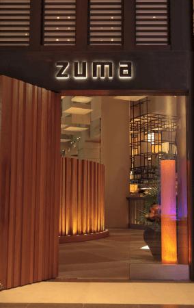 Zuma 001 Picture