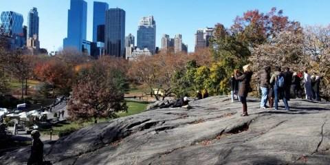 Central Park_Joe Buglewicz