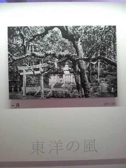 Aure d'Oriente - Calendario Epson