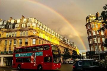 Notting Hill_Jonathan Brown