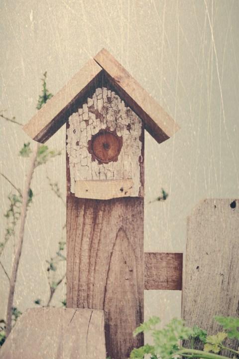 Birdy Bench