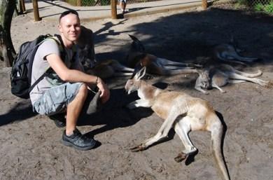 photo kangourou australie