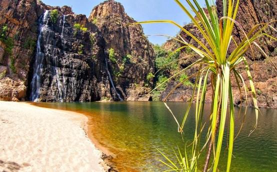 Kakadu Australie