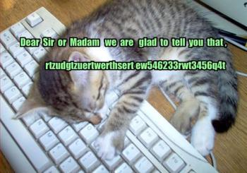 funny-pictures-kitten-falls-asleep-while-writing-a-letter