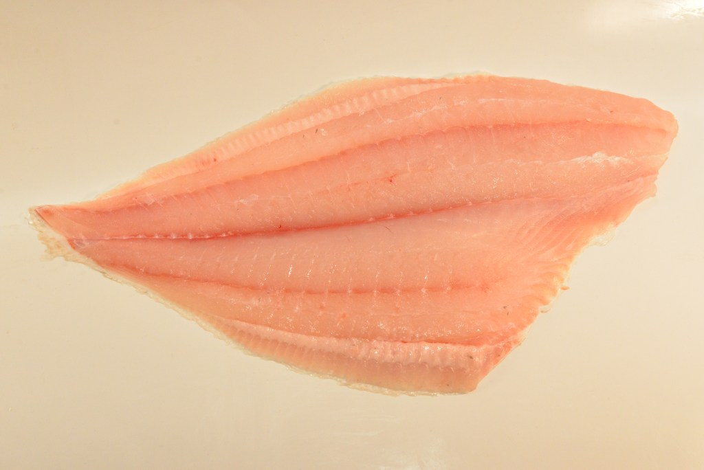 Halibut - California