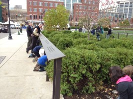 Students and volunteers plant bulbs on the Greenway (Photo by Diane Valle)