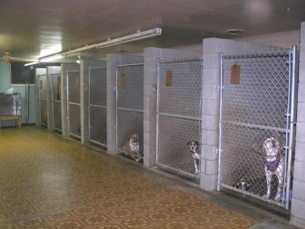 northgate kennel