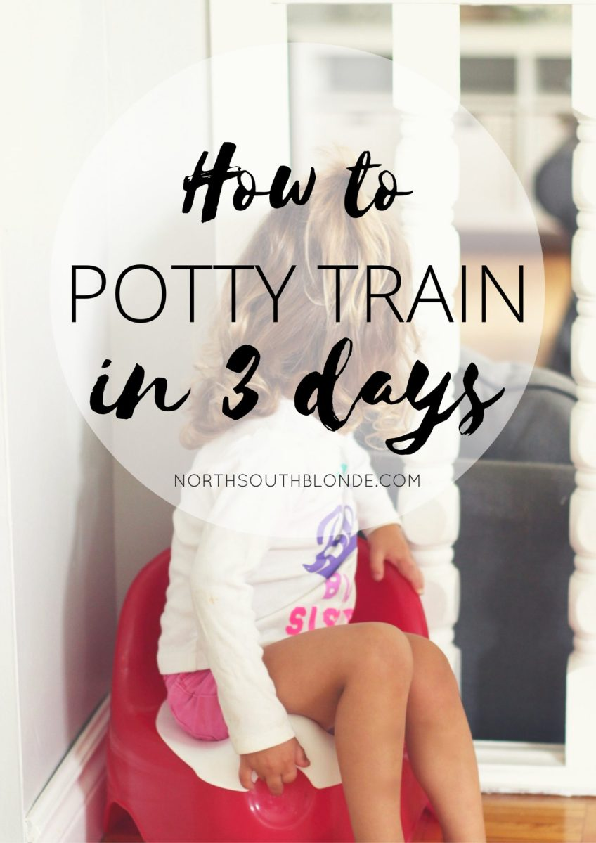 How to Potty Train in Three Days