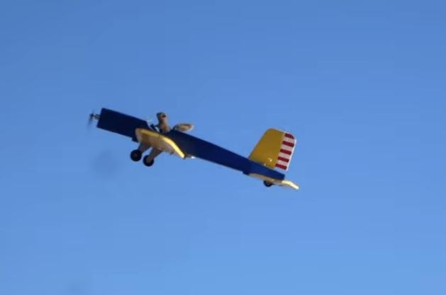 Squirrel steals Model Plane   NOSLEEPATALL