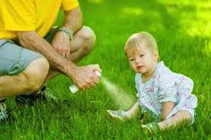 Coconut-Derived Insect Repellent More Effective Than Hazardous DEET