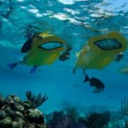 Zayak Underwater View Sea Sled