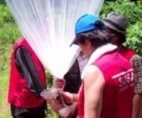 """Missionários cristãos fazem """"chover Bíblias"""" novamente sobre a Coréia do Norte"""