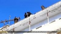 Estado Islâmico atira homossexuais de prédios na Síria; Menina cristã exilada perdoa terroristas