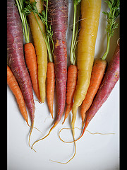A Selection of different coloured Carrots