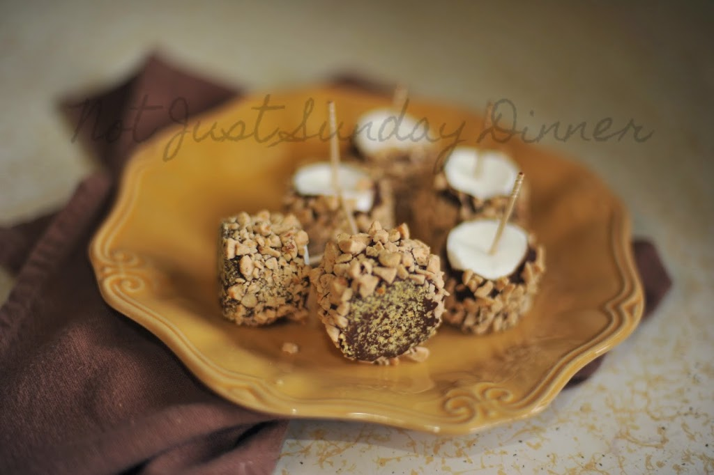 Frozen S'mores Bombs