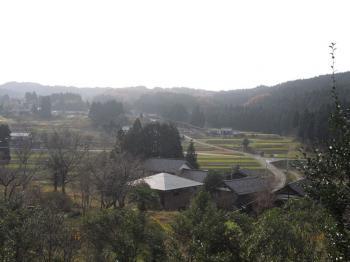 11.29金蔵