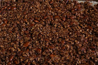chocolate peanut butter granola 1