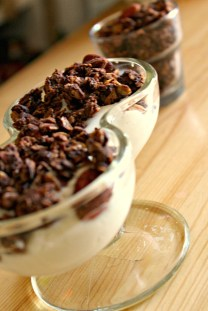 chocolate peanut butter granola 4