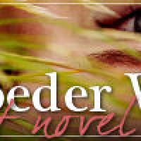 Lisa Schroeder Week: Lisa's Other YA Novels