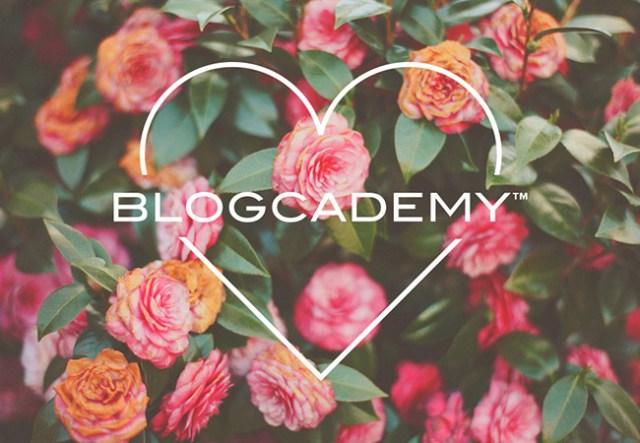 Nubby Twiglet   The Blogcademy Valentines Day Special