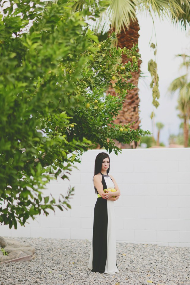 Nubby Twiglet | The Palm Springs Vow Renewal