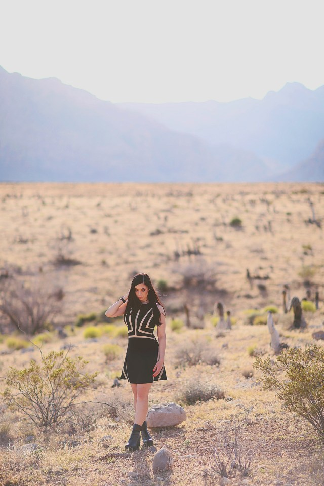 Nubby Twiglet | What I Wore: Little Black Dress in Red Rock