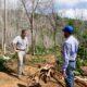 Medio Ambiente ha sometido y sancionado 475 personas por delitos ambientales