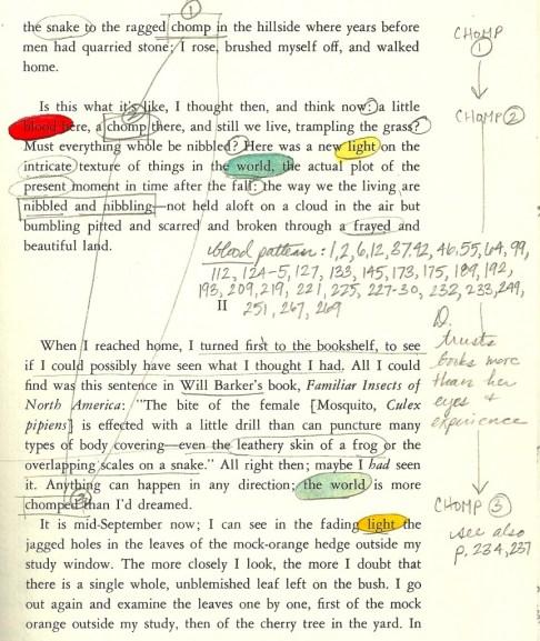 pilgrim page 227