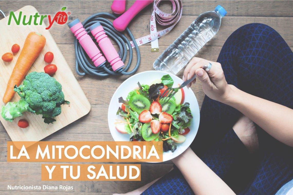 nutricionista Diana Rojas, nutryfit, nutricionista funcional, nutricionista oncológica, nutricionista Bogota