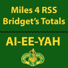 Bridget's Miles Logged for 3CR RSS Deployed Soldiers