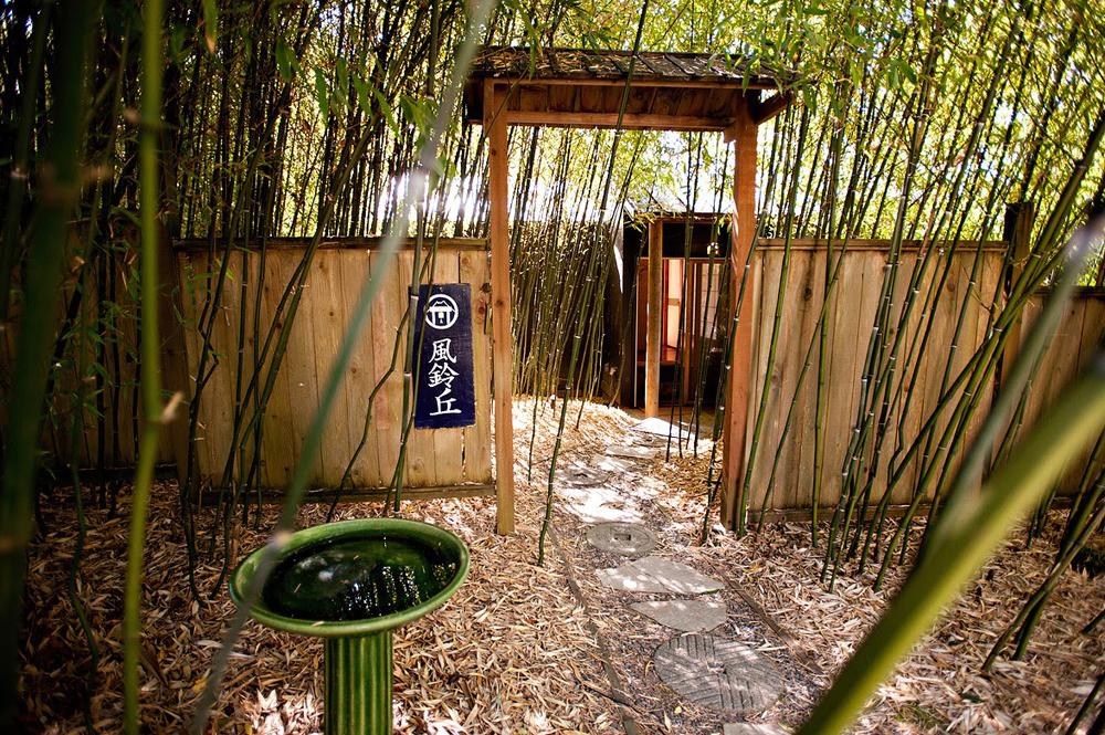 Bamboo grove (Photo provided by Fuurin-Oka)