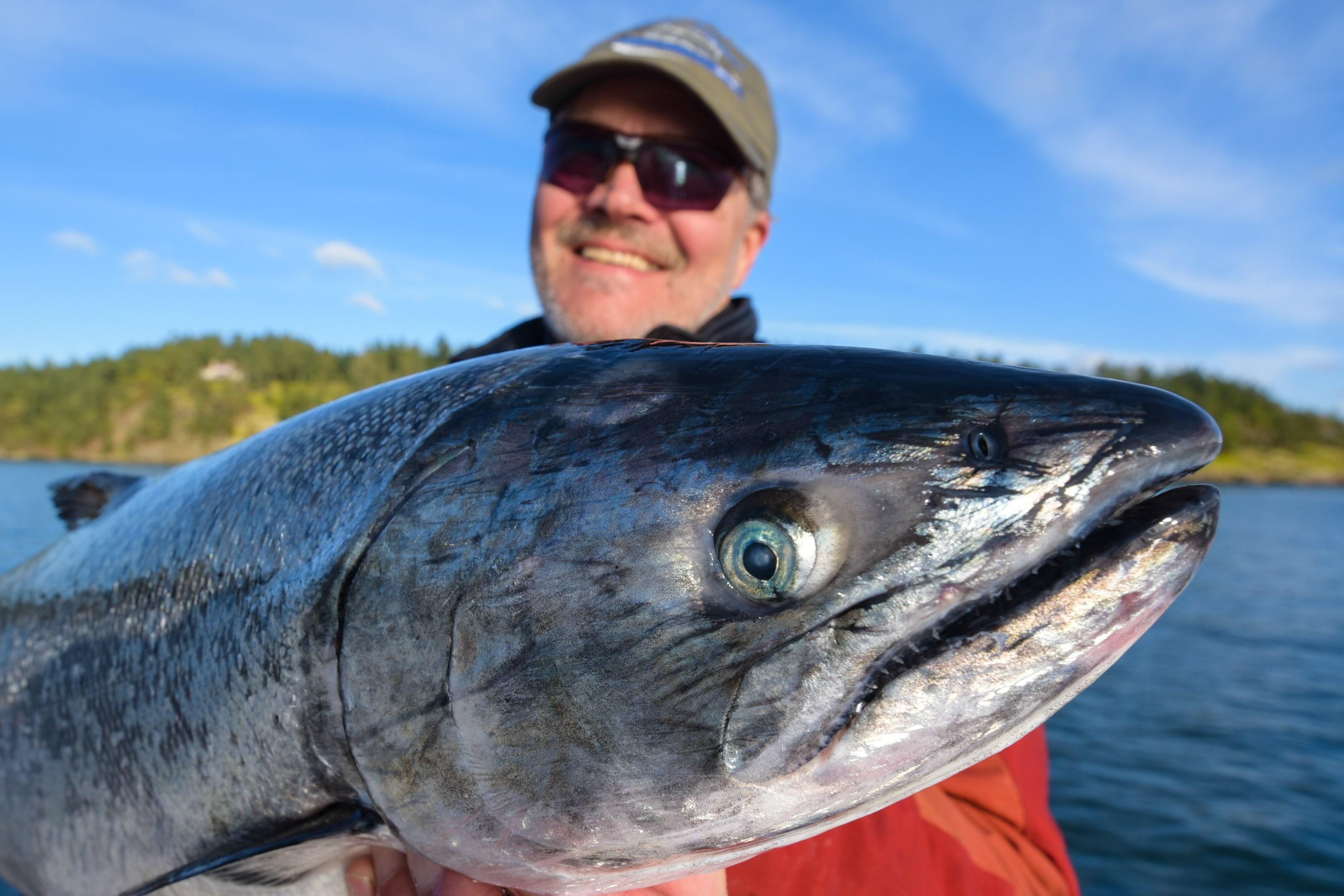 San juan islands fishing report td washington edition for San juan island fishing charters