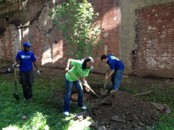 The New York Restoration Project: Citizens Keeping NYC Clean