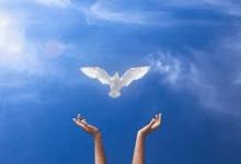 從詩篇61-72篇 學如何讚美上帝?(何治平牧師證道)