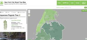 NYC street tree map