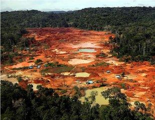 Amazônia abriga a terceira grande corrida do ouro.
