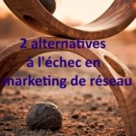 alternatives-marketing-de-reseau