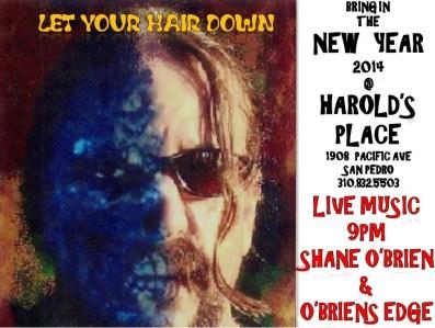 Shane O'Brien Live 12 31 2013