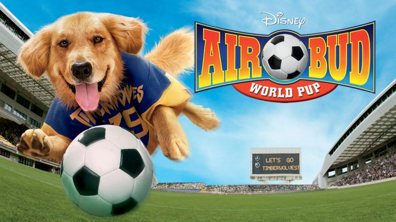 Large Of Air Bud Dog
