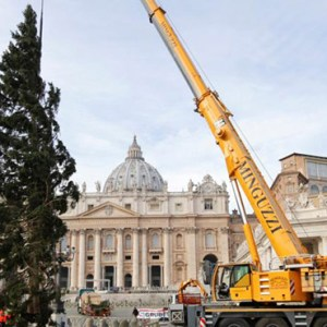 THE VATICAN CHRISTMAS TREE IS POSITIONED IN ST. PETER'S SQUARE AT THE VATICAN NOV. 24. THE 82-FEET-TALL TREE IS FROM THE TRENTINO PROVINCE IN NORTHERN ITALY. / PHOTO: (CNS PHOTO/MAX ROSSI, REUTERS)