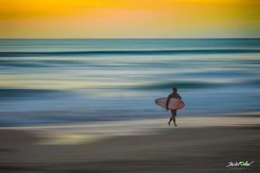 © David Ortner