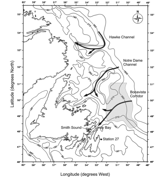 The cod complex - the three migration channels.  Credit: Rose & Rowe (2015).