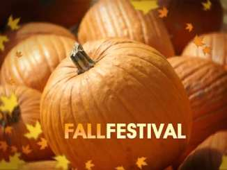 fall-festival-500