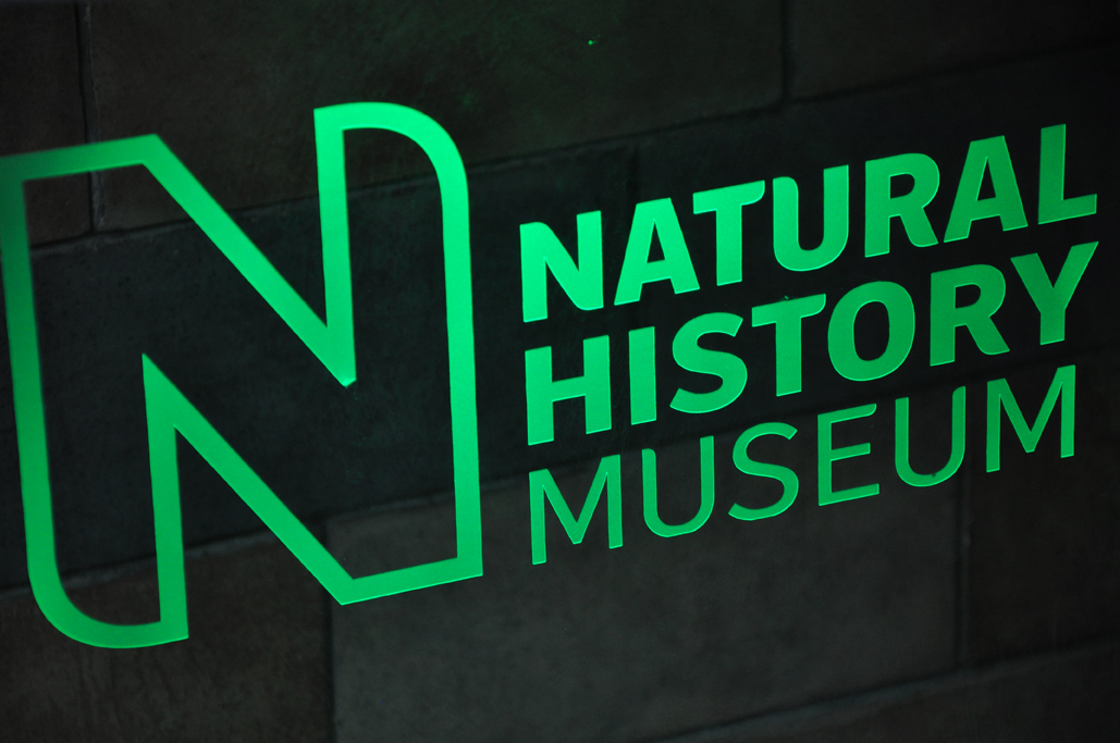 Orange County Florida Museum Of Natural History