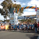 Guide to the Dana Point Turkey Trot and Giveaway