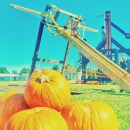 High-Flying Fun at the 2015 Pumpkin Launch