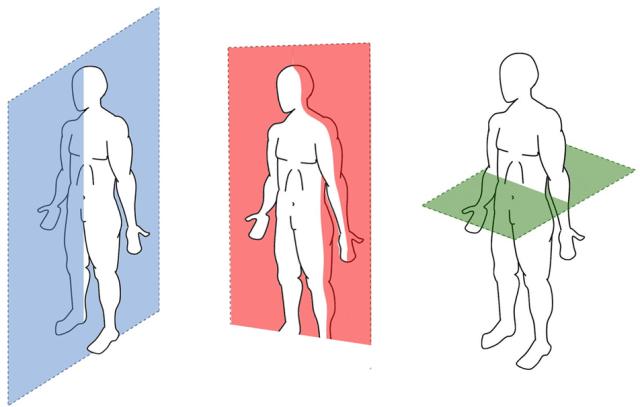 planos seccionais