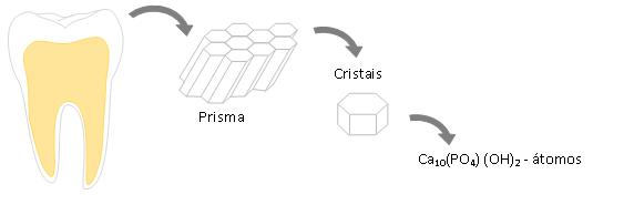 bioquimica 6
