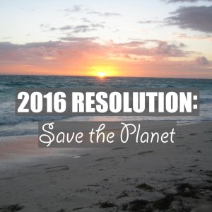 2016 Resolution: Save the Planet